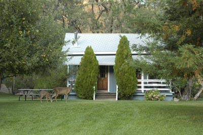 Deer in front of cottage built in 1854