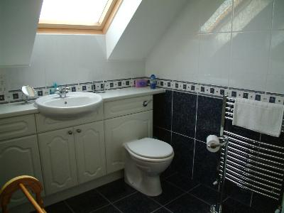 Ensuite shower toilet