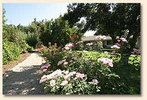 Blossom Trail Bed and Breakfast, Sanger, California