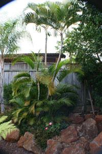 The Maui Guest House B&B, Lahaina, Hawaii